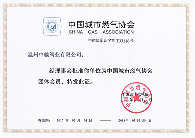 Membership of China Urban Gas Association