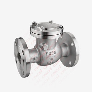 Swing Type Flanged Check Valve