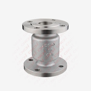 Vertical Lift Flanged Check Valve